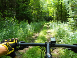 Bicycling trails in Vermont