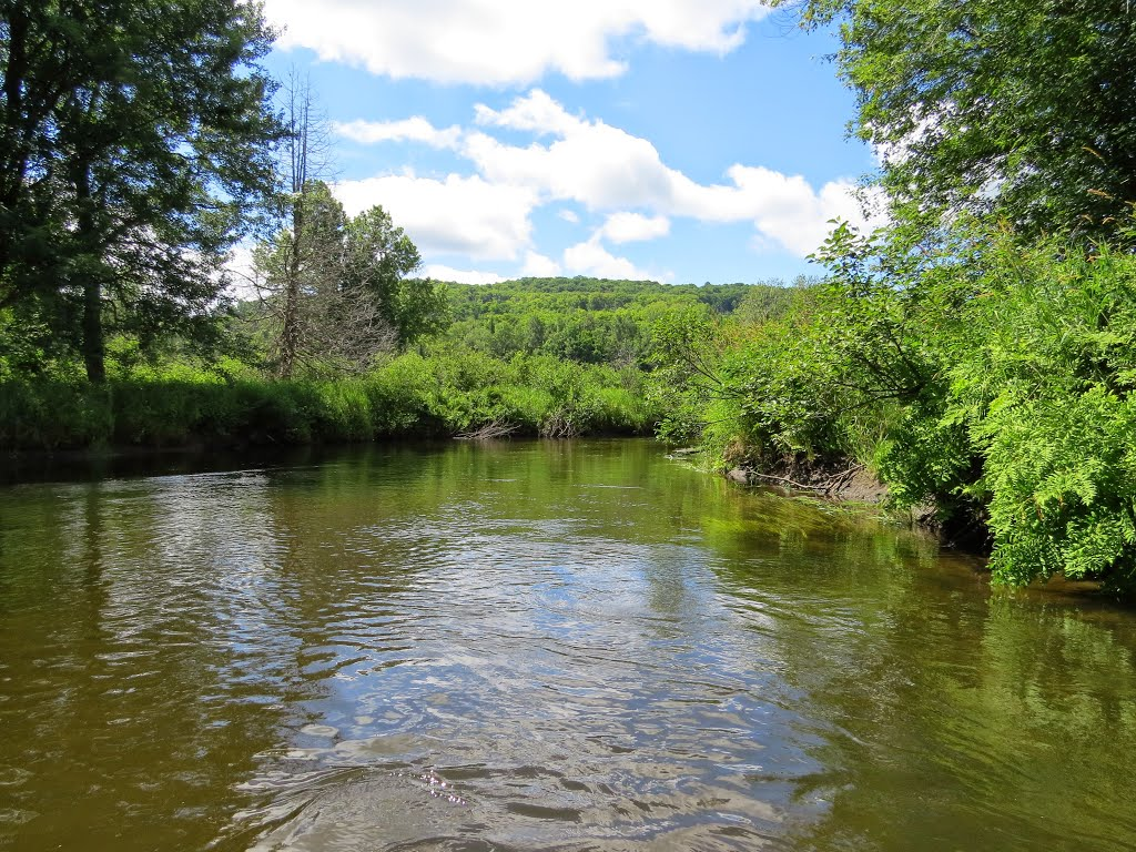 Boating and Paddling on Clyde River; Clyde River Recreation