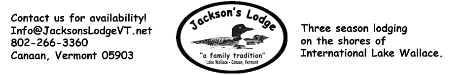 Jackson's Lodge and Log Cabins